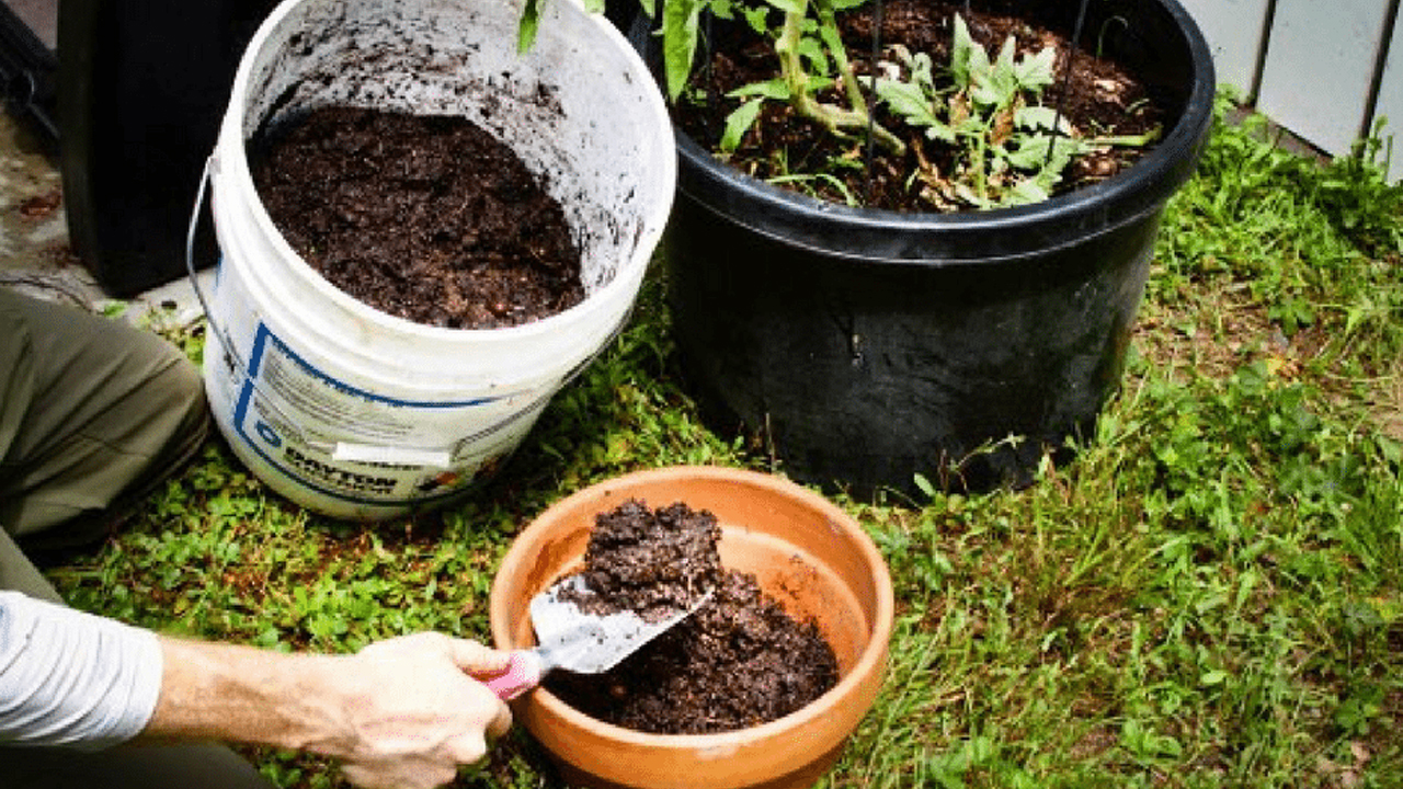 Compost and Hazardous in Pune